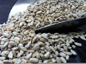 Raw Sunflower kernels (Insecticide Free)